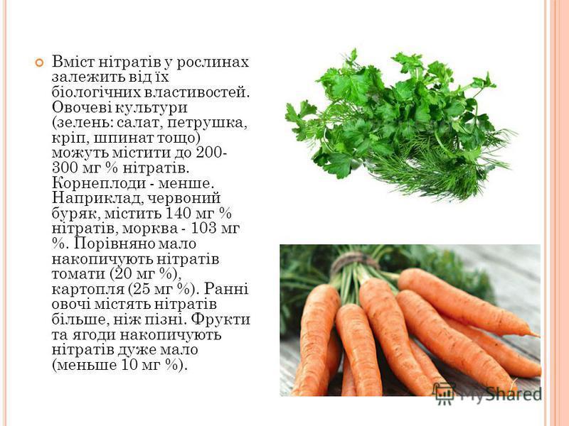 Вміст нітратів у рослинах залежить від їх біологічних властивостей. Овочеві культури (зелень: салат, петрушка, кріп, шпинат тощо) можуть містити до 200- 300 мг % нітратів. Корнеплоди - менше. Наприклад, червоний буряк, містить 140 мг % нітратів, морк