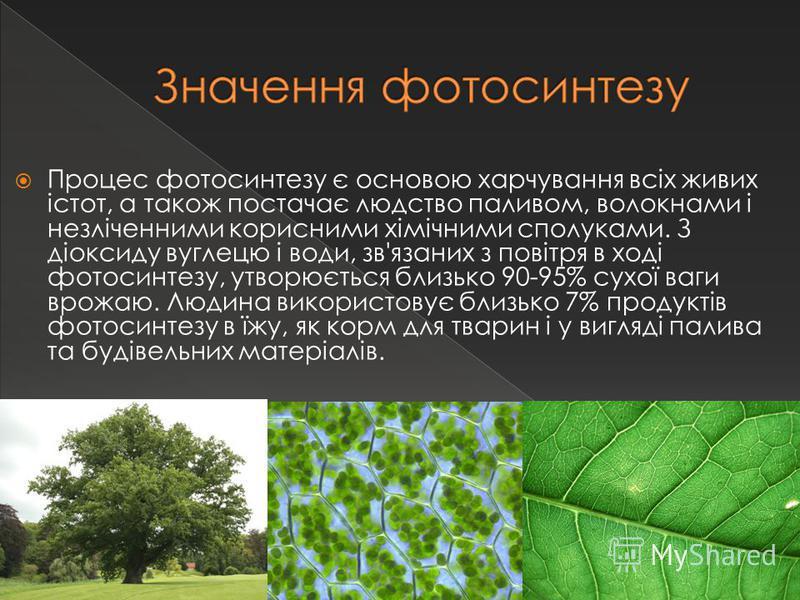 Процес фотосинтезу є основою харчування всіх живих істот, а також постачає людство паливом, волокнами і незліченними корисними хімічними сполуками. З діоксиду вуглецю і води, зв'язаних з повітря в ході фотосинтезу, утворюється близько 90-95% сухої ва