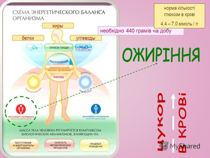 белкиуглеводы жиры необхідно 440 грамів на добу норма кількості глюкози в крові 4,4 – 7,0 ммоль / л