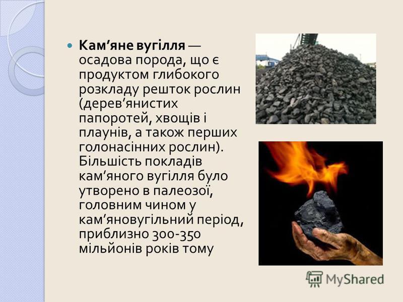 Кам яне вугілля осадова порода, що є продуктом глибокого розкладу решток рослин ( дерев янистих папоротей, хвощів і плаунів, а також перших голонасінних рослин ). Більшість покладів кам яного вугілля було утворено в палеозої, головним чином у кам яно