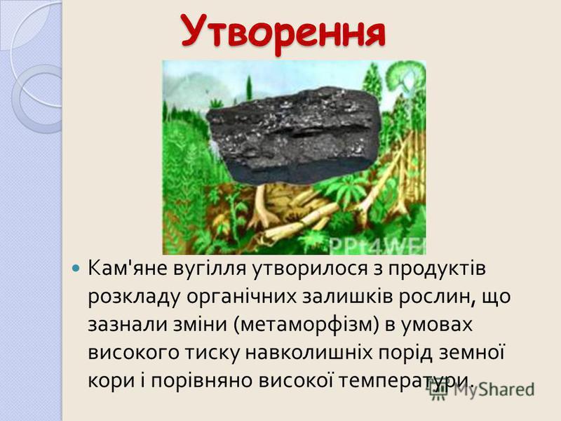 Утворення Кам ' яне вугілля утворилося з продуктів розкладу органічних залишків рослин, що зазнали зміни ( метаморфізм ) в умовах високого тиску навколишніх порід земної кори і порівняно високої температури.