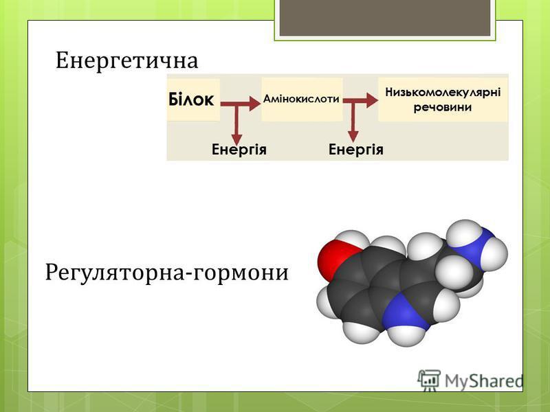 Енергетична Енергія Білок Амінокислоти Низькомолекулярні речовини Регуляторна-гормони