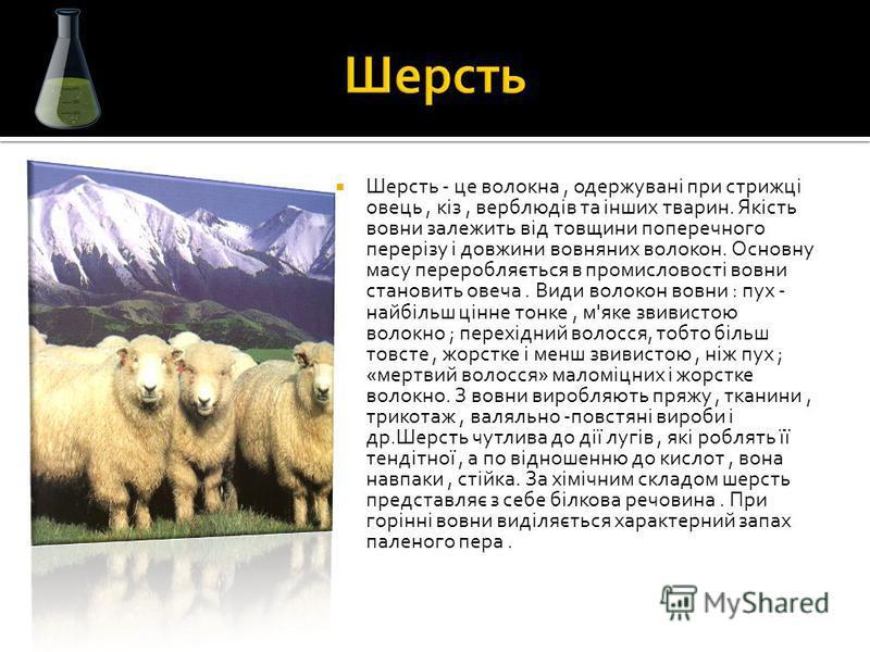 Шерсть - це волокна, одержувані при стрижці овець, кіз, верблюдів та інших тварин. Якість вовни залежить від товщини поперечного перерізу і довжини вовняних волокон. Основну масу переробляється в промисловості вовни становить овеча. Види волокон вовн