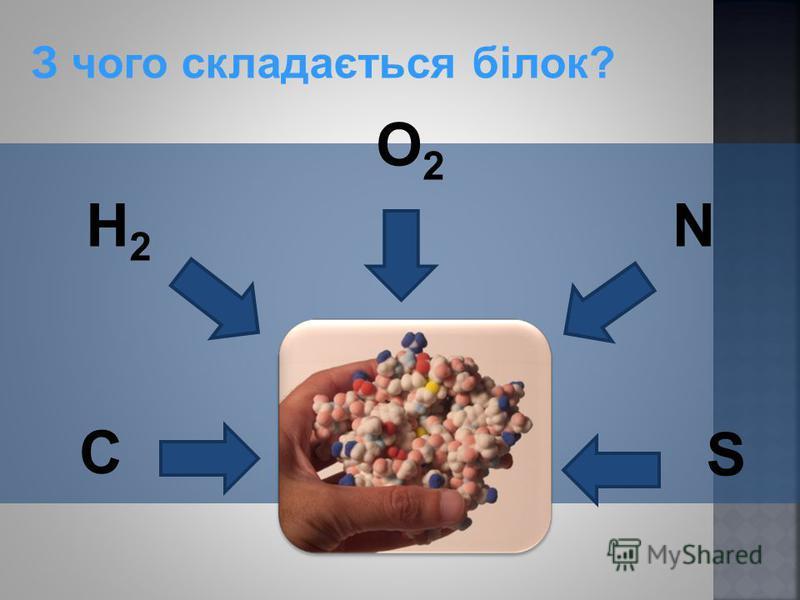 З чого складається білок? O2O2 N C H2 H2 S
