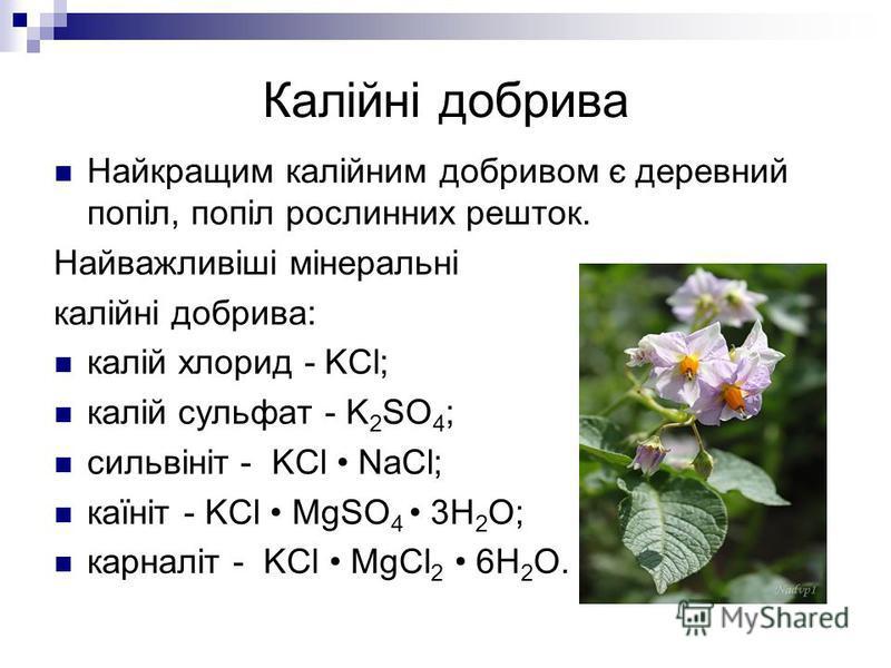 Калійні добрива Найкращим калійним добривом є деревний попіл, попіл рослинних решток. Найважливіші мінеральні калійні добрива: калій хлорид - KCl; калій сульфат - K 2 SO 4 ; сильвініт - KCl NaCl; каїніт - KCl MgSO 4 3H 2 O; карналіт - KCl MgCl 2 6H 2