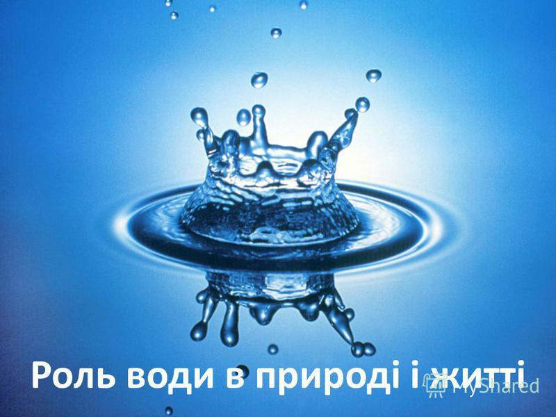 Роль води в природі і житті