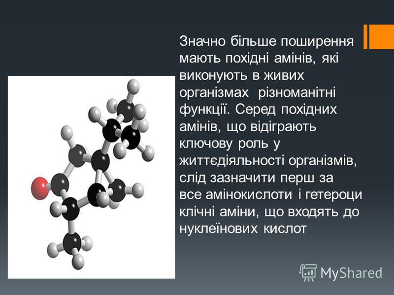 Значно більше поширення мають похідні амінів, які виконують в живих організмах різноманітні функції. Серед похідних амінів, що відіграють ключову роль у життєдіяльності організмів, слід зазначити перш за все амінокислоти і гетероци клічні аміни, що в