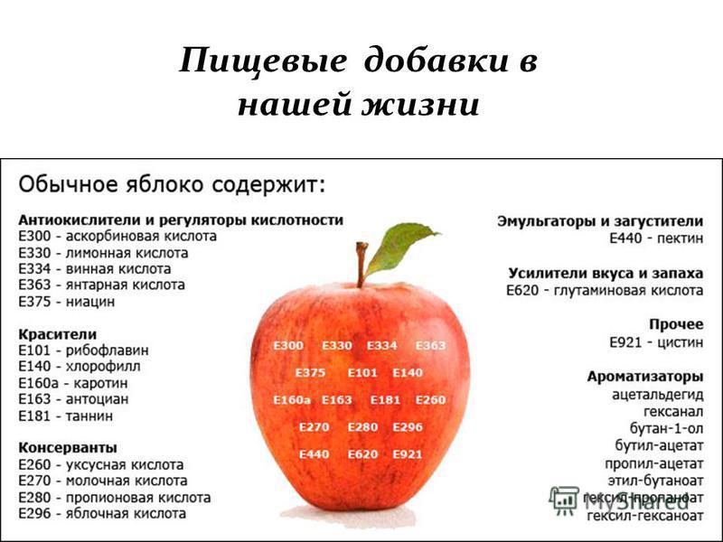 Пищевые добавки в нашей жизни