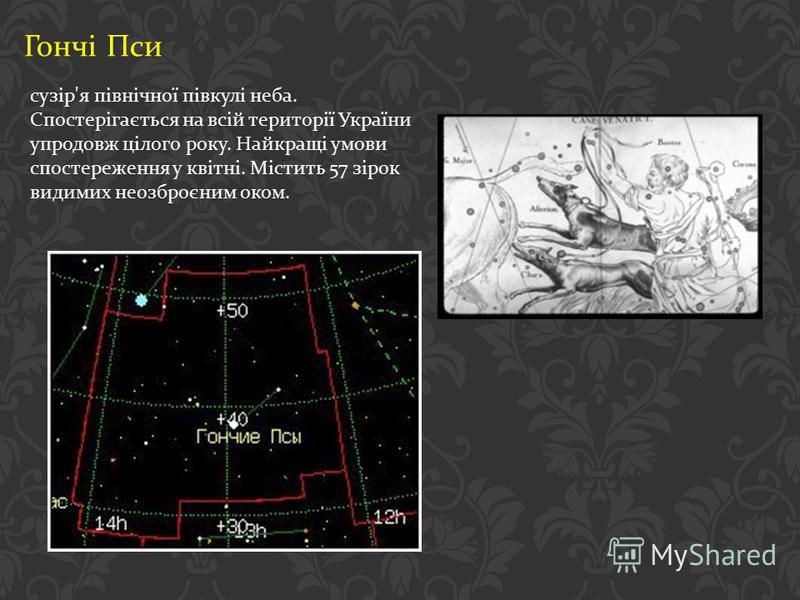 Гончі Пси сузір ' я північної півкулі неба. Спостерігається на всій території України упродовж цілого року. Найкращі умови спостереження у квітні. Містить 57 зірок видимих неозброєним оком.