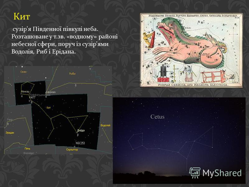 Кит сузір ' я Південної півкулі неба. Розташоване у т. зв. « водному » районі небесної сфери, поруч із сузір ' ями Водолія, Риб і Ерідана.