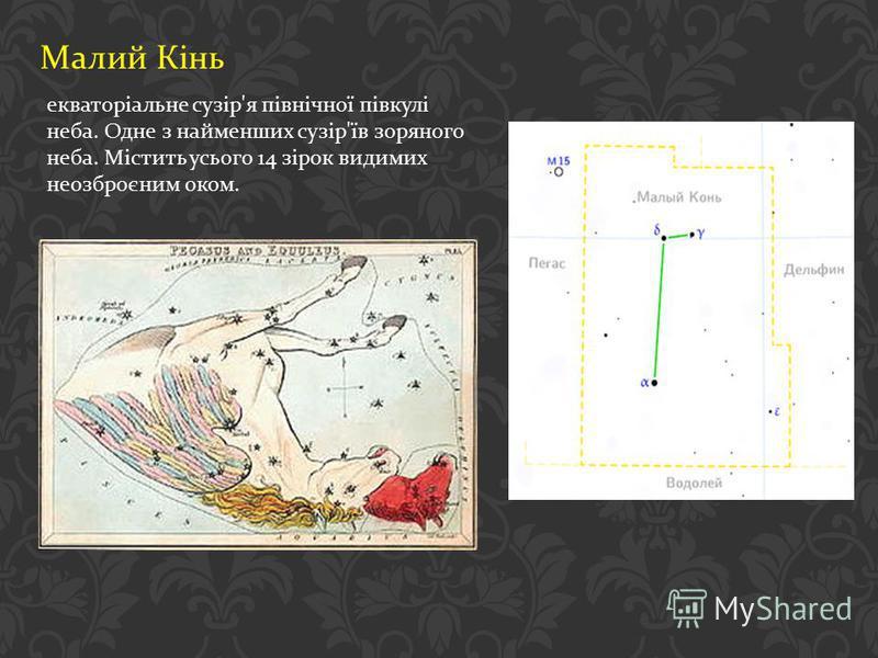 Малий Кінь екваторіальне сузір ' я північної півкулі неба. Одне з найменших сузір ' їв зоряного неба. Містить усього 14 зірок видимих неозброєним оком.