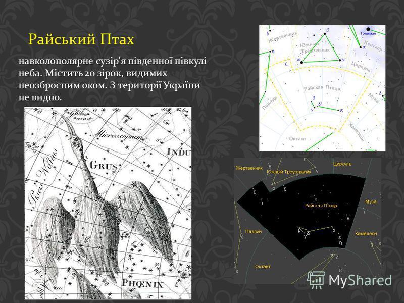 Райський Птах навколополярне сузір ' я південної півкулі неба. Містить 20 зірок, видимих неозброєним оком. З території України не видно.