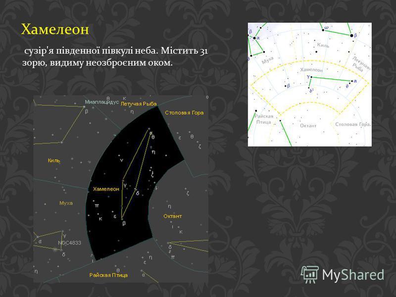 Хамелеон сузір ' я південної півкулі неба. Містить 31 зорю, видиму неозброєним оком.