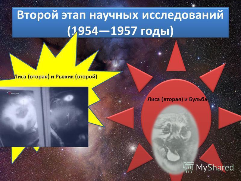 Второй этап научных исследований (19541957 годы) Лиса (вторая) и Рыжик (второй) Лиса (вторая) и Бульба