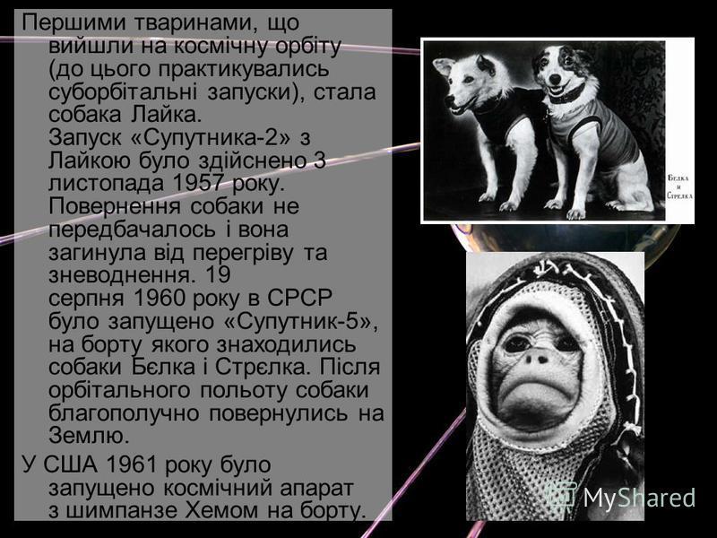Першими тваринами, що вийшли на космічну орбіту (до цього практикувались суборбітальні запуски), стала собака Лайка. Запуск «Супутника-2» з Лайкою було здійснено 3 листопада 1957 року. Повернення собаки не передбачалось і вона загинула від перегріву