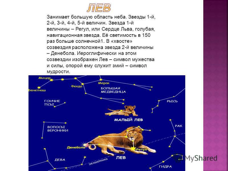 Занимает большую область неба. Звезды 1-й, 2-й, 3-й, 4-й, 5-й величин. Звезда 1-й величины – Регул, или Сердце Льва, голубая, навигационная звезда. Её светимость в 150 раз больше солнечной 1. В «хвосте» созвездия расположена звезда 2-й величины – Ден