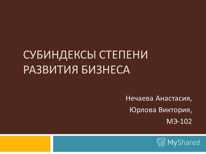 СУБИНДЕКСЫ СТЕПЕНИ РАЗВИТИЯ БИЗНЕСА Нечаева Анастасия, Юрлова Виктория, МЭ -102