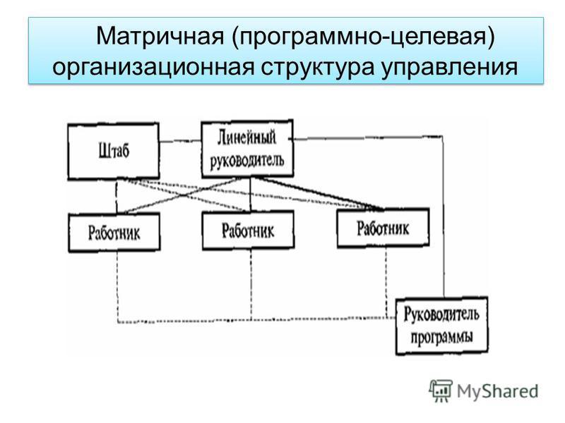 Матричная (программно-целевая) организационная структура управления