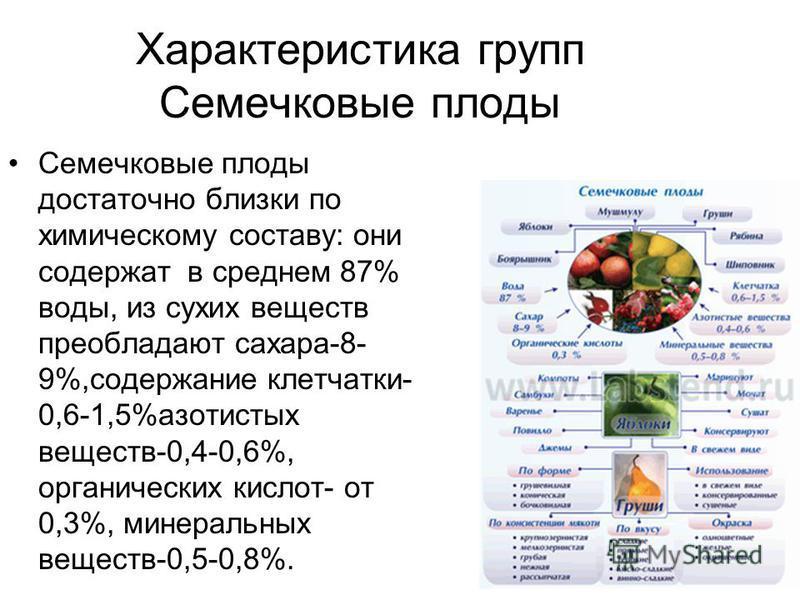 Характеристика групп Семечковые плоды Семечковые плоды достаточно близки по химическому составу: они содержат в среднем 87% воды, из сухих веществ преобладают сахара-8- 9%,содержание клетчатки- 0,6-1,5%азотистых веществ-0,4-0,6%, органических кислот-