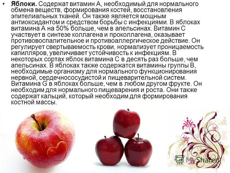 Яблоки. Содержат витамин А, необходимый для нормального обмена веществ, формирования костей, восстановления эпителиальных тканей. Он также является мощным антиоксидантом и средством борьбы с инфекциями. В яблоках витамина A на 50% больше, чем в апель