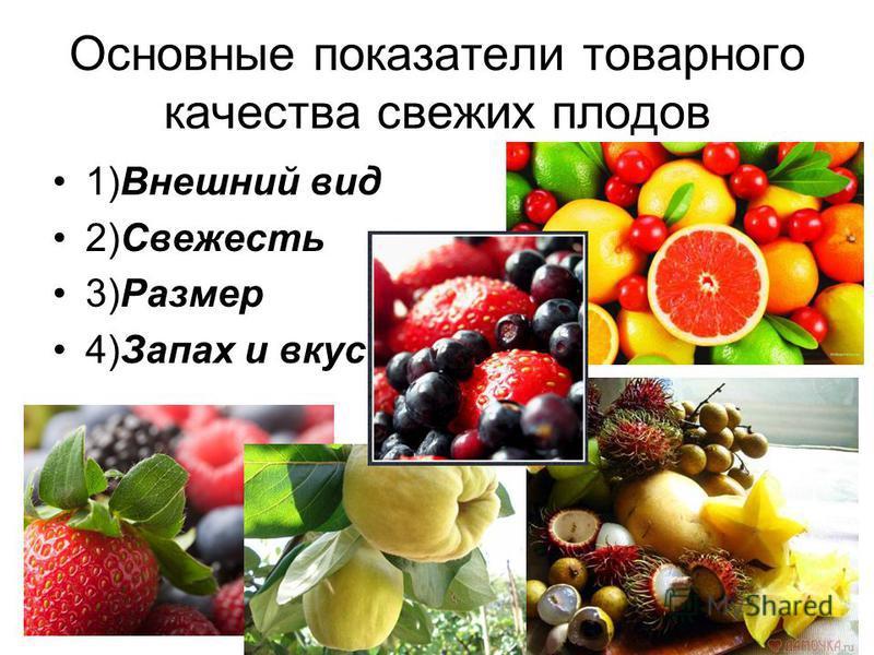 Основные показатели товарного качества свежих плодов 1)Внешний вид 2)Свежесть 3)Размер 4)Запах и вкус