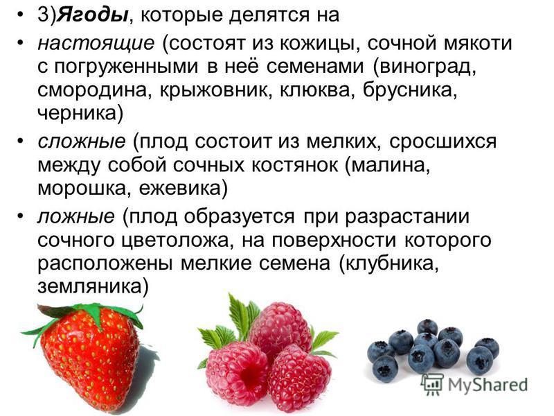 3)Ягоды, которые делятся на настоящие (состоят из кожицы, сочной мякоти с погруженными в неё семенами (виноград, смородина, крыжовник, клюква, брусника, черника) сложные (плод состоит из мелких, сросшихся между собой сочных костянок (малина, морошка,