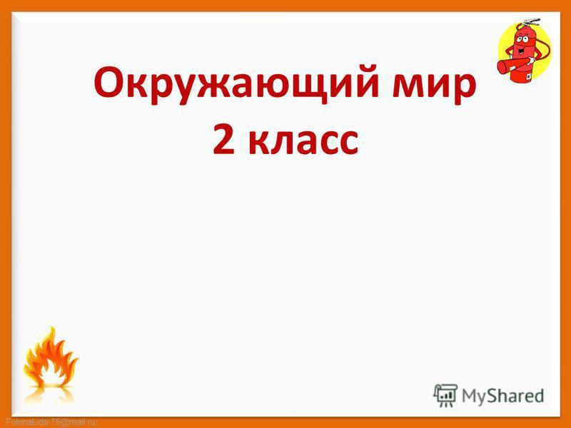FokinaLida.75@mail.ru Окружающий мир 2 класс