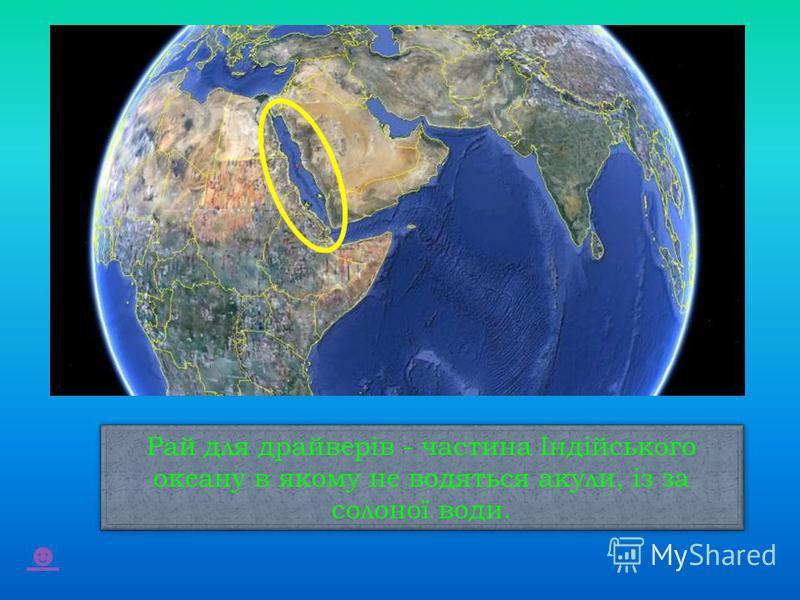 Рай для драйверів - частина Індійського океану в якому не водяться акули, із за солоної води.