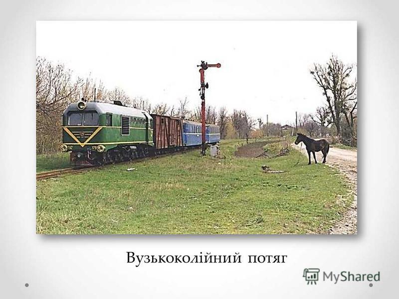 Вузькоколійний потяг