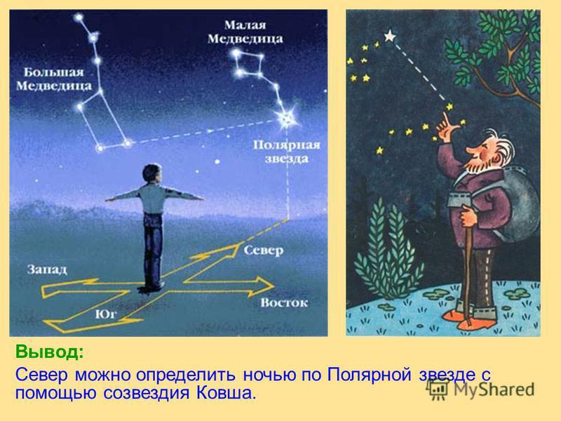 Вывод: Север можно определить ночью по Полярной звезде с помощью созвездия Ковша.