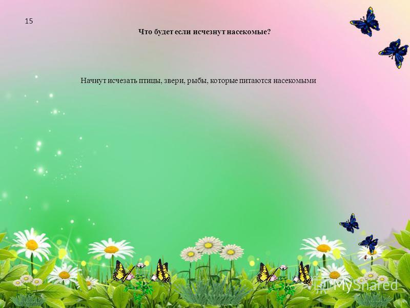 Что будет если исчезнут насекомые? Начнут исчезать птицы, звери, рыбы, которые питаются насекомыми 15