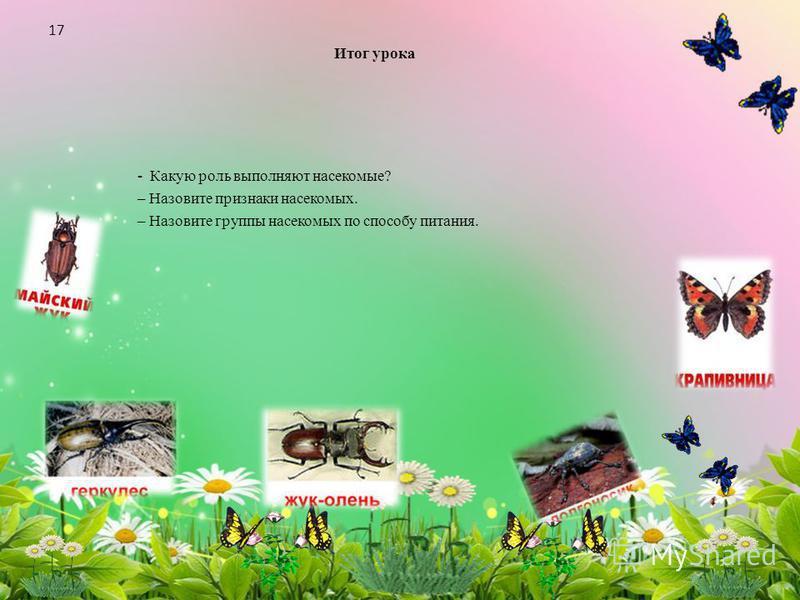 Итог урока - Какую роль выполняют насекомые? – Назовите признаки насекомых. – Назовите группы насекомых по способу питания. 17