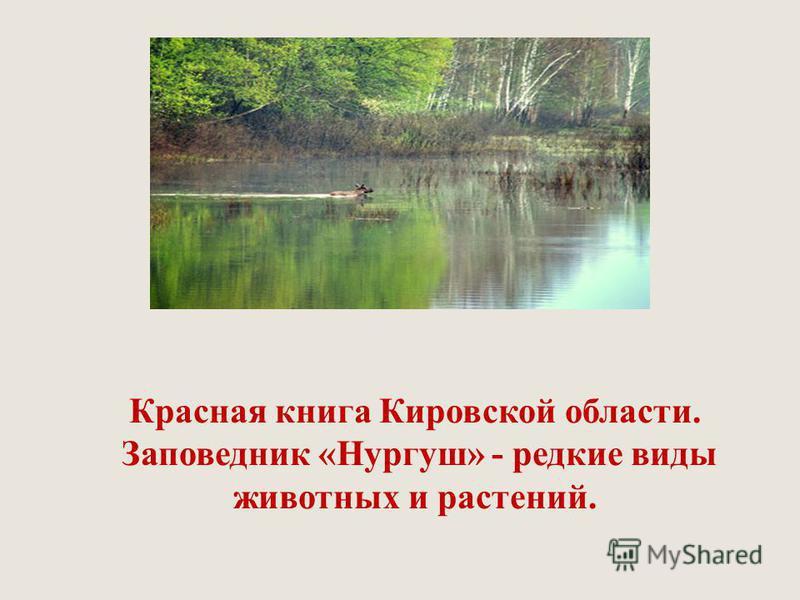 Красная книга кировской области презентация скачать бесплатно