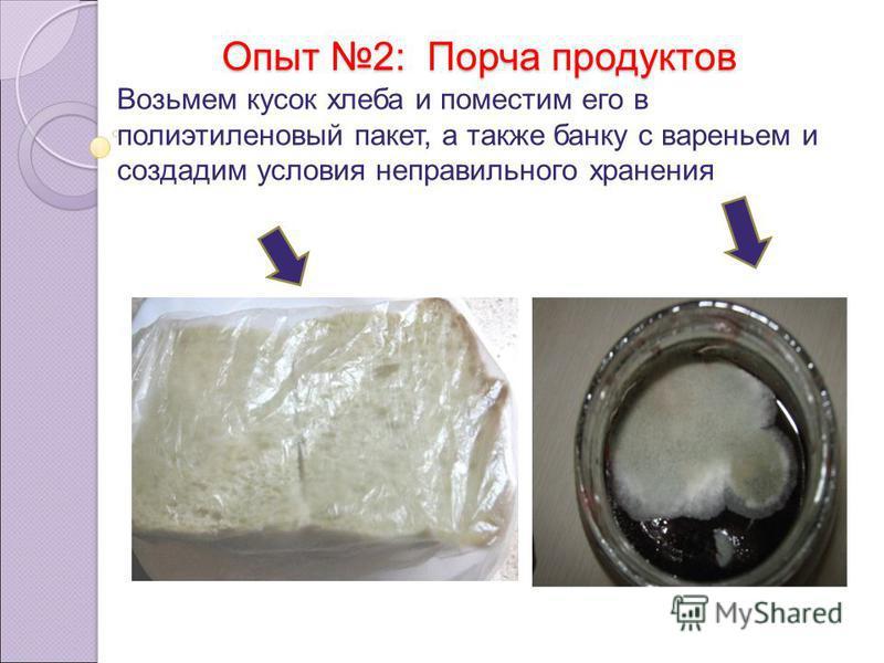 Опыт 2: Порча продуктов Возьмем кусок хлеба и поместим его в полиэтиленовый пакет, а также банку с вареньем и создадим условия неправильного хранения