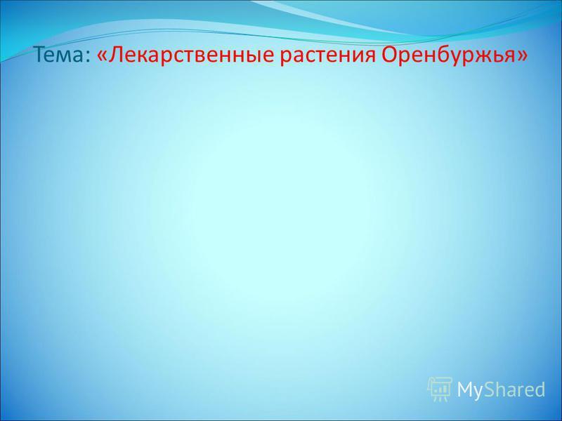Тема: «Лекарственные растения Оренбуржья»