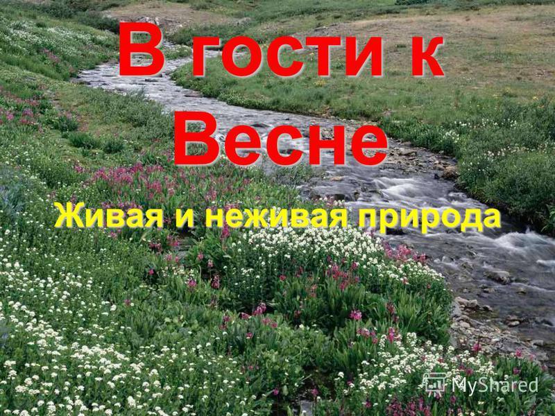 Картинки о весне природа для детей