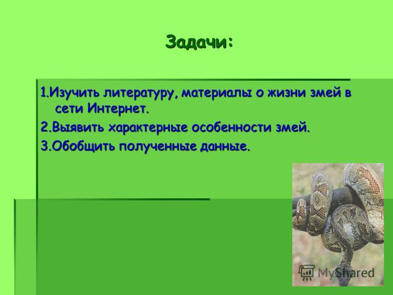 Задачи: 1. Изучить литературу, материалы о жизни змей в сети Интернет. 2. Выявить характерные особенности змей. 3. Обобщить полученные данные.