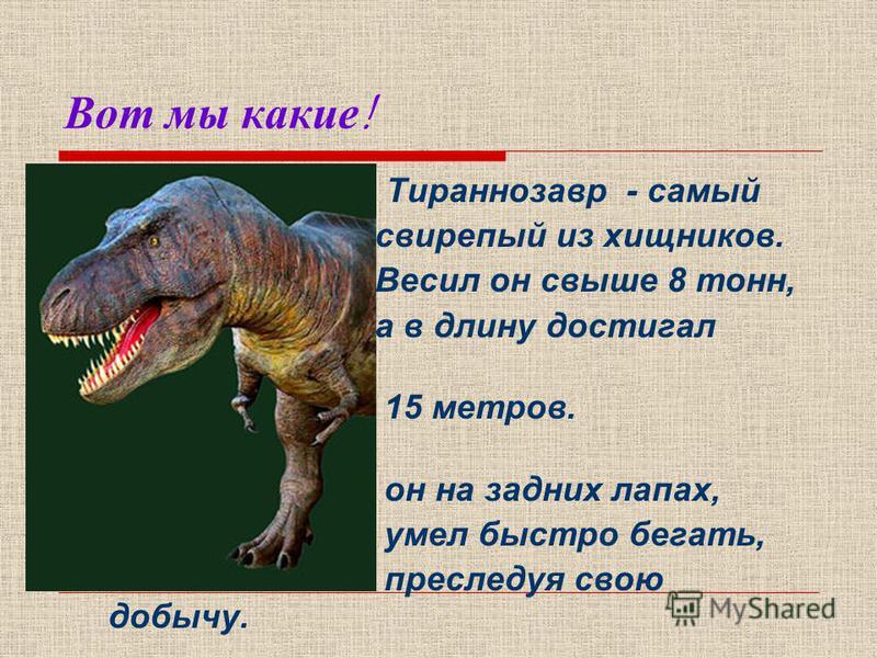 А когда жили динозавры? Динозавр – «ужасная ящерица». Они обитали на земле от 200 до 65 миллионов лет назад, населяя Землю в течении примерно 132 миллионов лет. Обитало огромное количество самых разнообразных видов динозавров, однако не все они жили