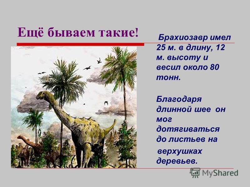 Вот мы какие ! Тираннозавр - самый свирепый из хищников. Весил он свыше 8 тонн, а в длину достигал почти 15 метров. Передвигался он на задних лапах, умел быстро бегать, преследуя свою добычу.