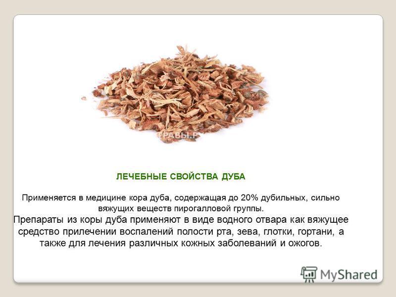 Вяжущие вещество из коры дуба кроссворд