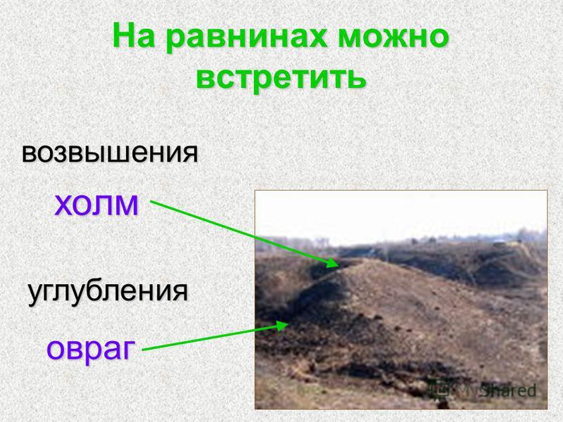 На равнинах можно встретить холм углубления овраг возвышения