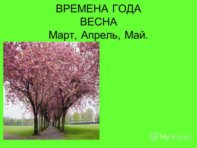 ВРЕМЕНА ГОДА ВЕСНА Март, Апрель, Май.