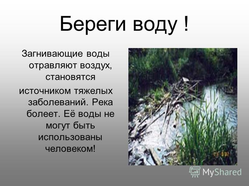 Береги воду ! Загнивающие воды отравляют воздух, становятся источником тяжелых заболеваний. Река болеет. Её воды не могут быть использованы человеком!