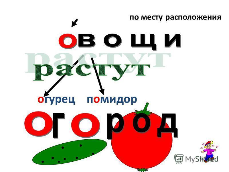 огурец помидор Овощи, огурец, помидор, огород по месту расположения