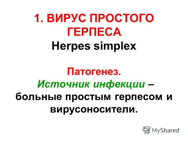 1. ВИРУС ПРОСТОГО ГЕРПЕСА Herpes simplex Патогенез. Источник инфекции – больные простым герпесом и вирусоносители.
