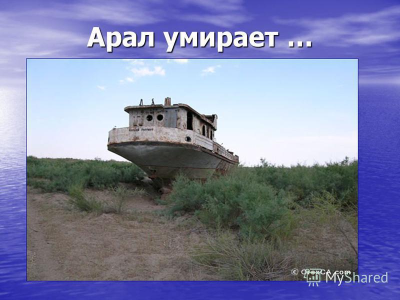 Карта Аральского моря Еще не так давно Аральское море было четвертым по величине озером в мире, славилось богатейшими природными запасами, а зона Приаралья считалась процветающей и биологически богатой природной средой. И неудивительно, что озеро пол