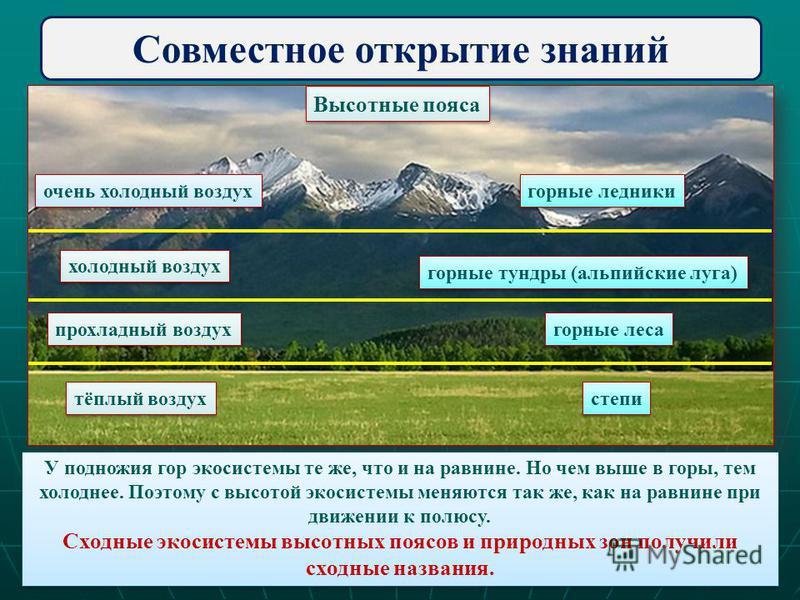 Совместное открытие знаний очень холодный воздух горные ледники горные ледники холодный воздух горные тундры (альпийские луга) прохладный воздух горные леса тёплый воздух степи У подножия гор экосистемы те же, что и на равнине. Но чем выше в горы, те