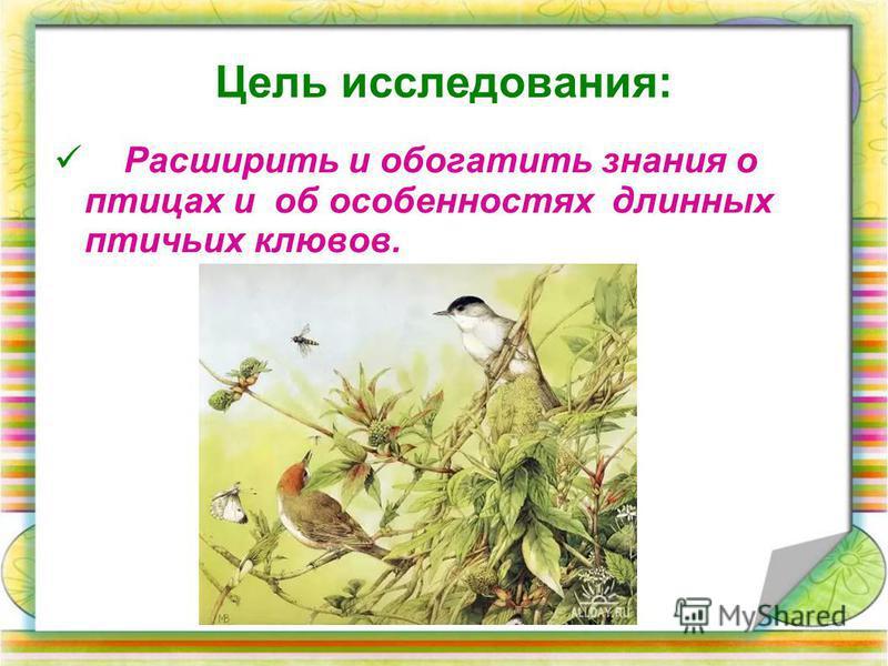 Расширить и обогатить знания о птицах и об особенностях длинных птичьих клювов. Цель исследования: