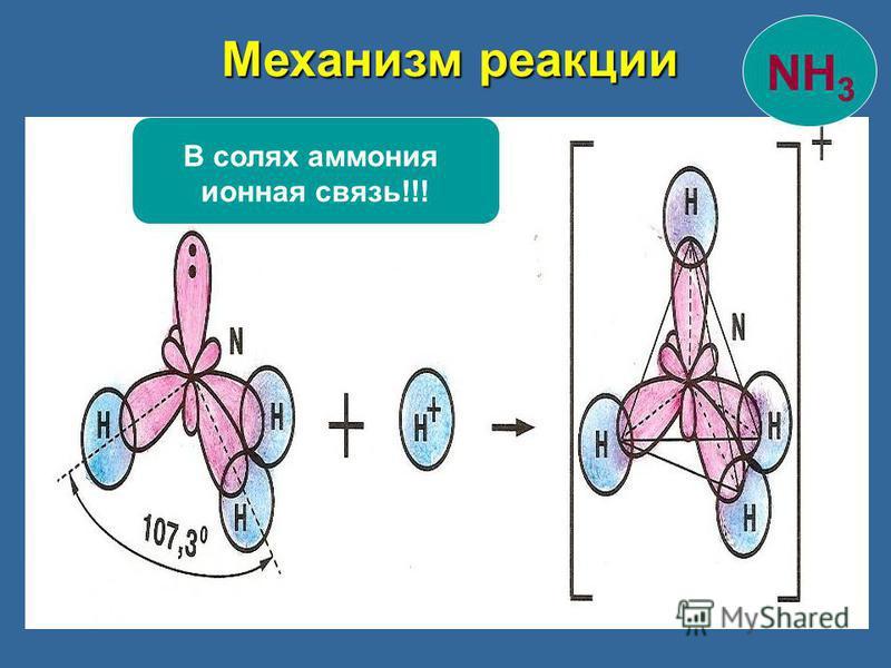 Механизм реакции В солях аммония ионная связь!!! NH 3
