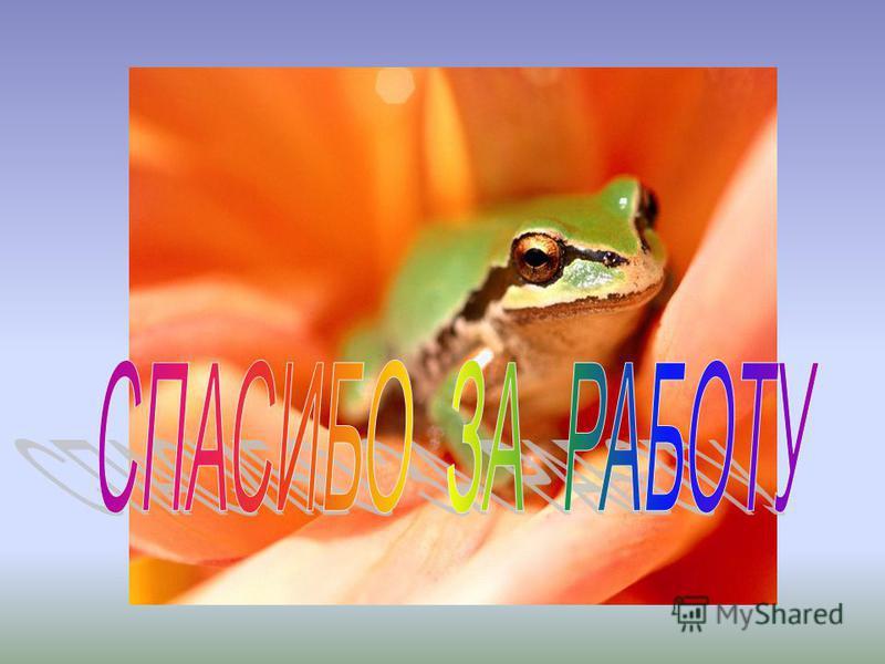 1) Стр. 83 – 86, отвечать на вопросы. 2) Найти и выписать народные приметы о лягушках. 3) Подобрать 5 пословиц о лягушках и жабах. 4) Интересный факт о земноводном + рисунок.